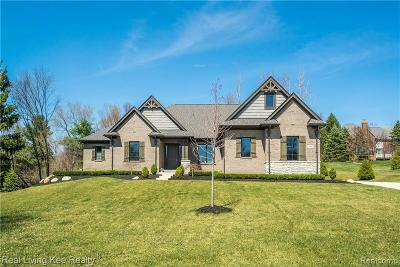 Oakland Twp Single Family Home For Sale: 2960 Plum Creek Dr