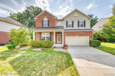 Rochester Hills Single Family Home For Sale: 3370 Everett Dr