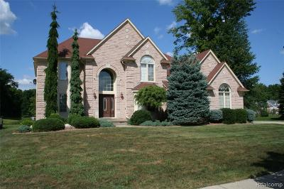 Sterling Heights Single Family Home For Sale: 44121 Ginkgo Dr