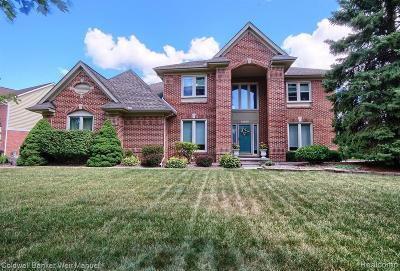 Canton Single Family Home For Sale: 45490 Muirfield Dr