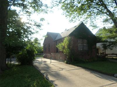 Dearborn Heights Single Family Home For Sale: 6457 Heyden St
