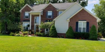 Clarkston Single Family Home For Sale: 9589 Wellington Crt