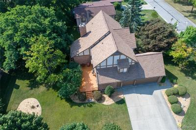 Rochester Hills Single Family Home For Sale: 668 Timberline Dr