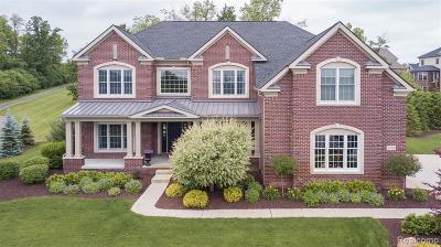 Northville Single Family Home For Sale: 17331 Crestbrook Dr