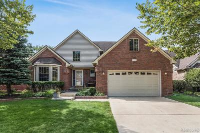 Livonia Single Family Home For Sale: 37487 Eagle Dr