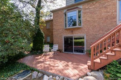 Farmington Hills Single Family Home For Sale: 25250 Brookview St