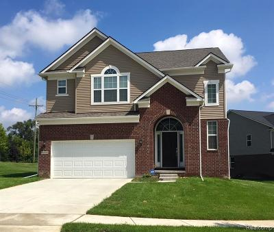 Canton Single Family Home For Sale: 49476 Seagrass