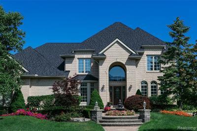 Northville Single Family Home For Sale: 48576 Stoneridge Dr.