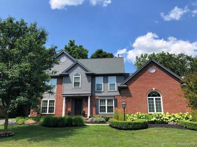 Northville Single Family Home For Sale: 16145 Maplewood Crt