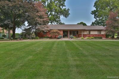 Wayne County Single Family Home For Sale: 27620 Prescott St