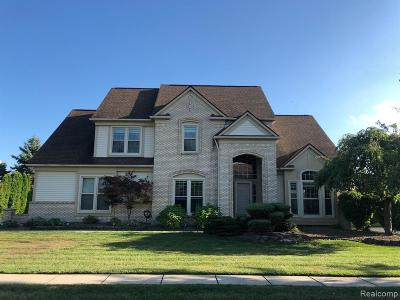 Wayne County Single Family Home For Sale: 47051 Eastbourne Rd