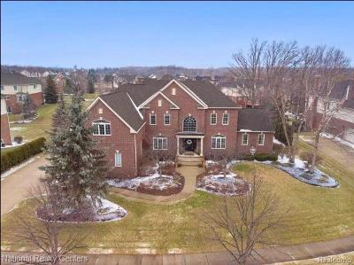 Wayne County Single Family Home For Sale: 50464 Eagles Nest