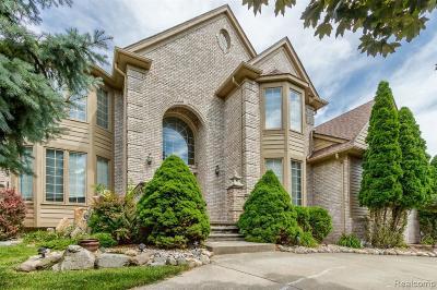 Rochester Hills Single Family Home For Sale: 3566 Heron Ridge Dr