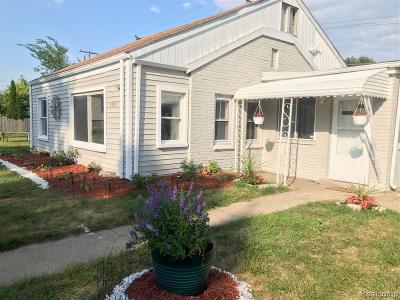 Mount Clemens Single Family Home For Sale: 119 Beyne St