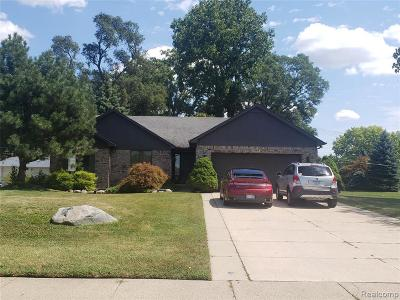 Dearborn Single Family Home For Sale: 6192 N Inkster Rd