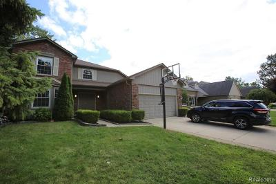 Troy Single Family Home For Sale: 6258 Brittany Tree Dr