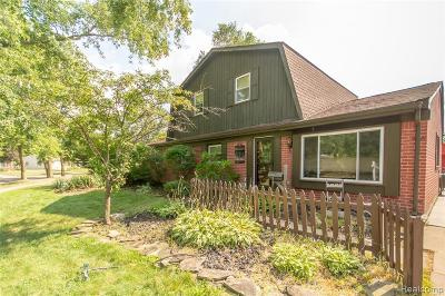 Shelby Twp Single Family Home For Sale: 4800 Sidney St