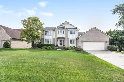 Farmington Hills Single Family Home For Sale: 37274 Aspen Dr