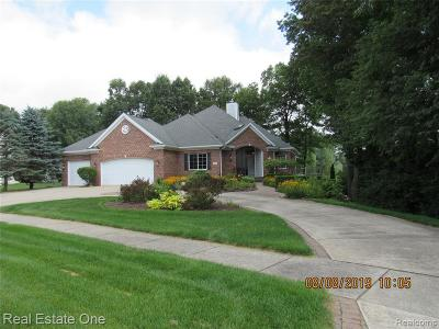 Lake Orion Single Family Home For Sale: 336 Orchard Ridge Dr