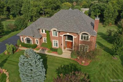Clarkston Single Family Home For Sale: 9304 Oakmont Dr