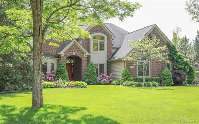Clarkston Single Family Home For Sale: 9775 Kingston Pointe Dr