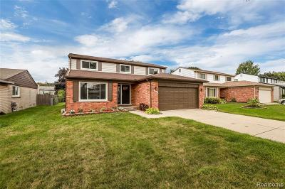 Southfield Single Family Home For Sale: 27355 Aberdeen St