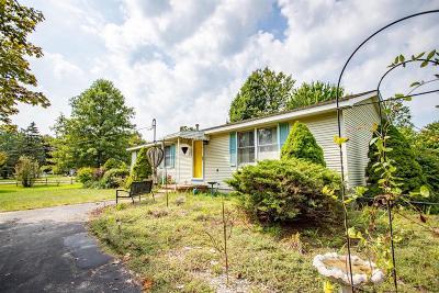Belleville Single Family Home For Sale: 21720 Meri Dr