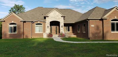 Washington MI Single Family Home For Sale: $665,000