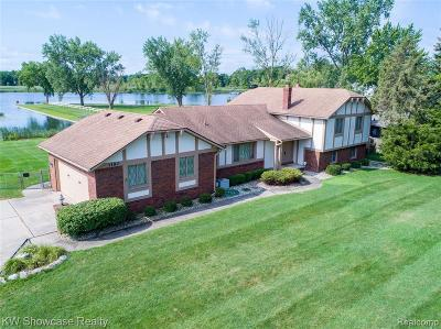 Oakland County Single Family Home For Sale: 1180 Shady Ln