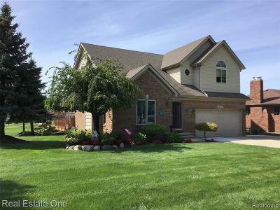 Clinton Township MI Single Family Home For Sale: $320,000
