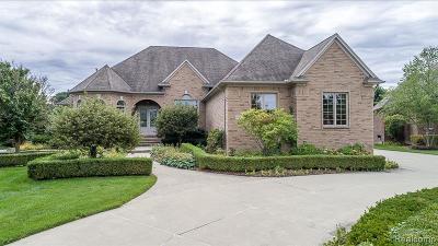Washington MI Single Family Home For Sale: $500,000