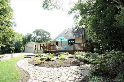 Washington MI Single Family Home For Sale: $370,000