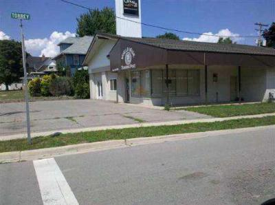 Armada, Armada Twp Commercial/Industrial For Sale: 74020 Fulton