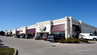 Clinton Township Commercial Lease For Lease: 20586 Hall Road