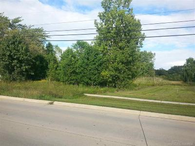 Macomb Twp Residential Lots & Land For Sale: 46346 Romeo Plank Rd