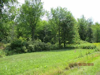 Residential Lots & Land For Sale: McKinley Road