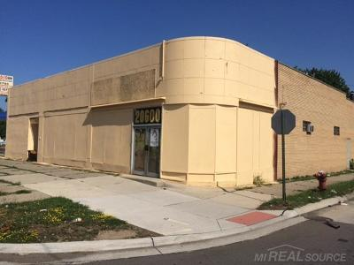 Commercial/Industrial For Sale: 20600 W 7 Mile