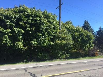Residential Lots & Land For Sale: Vacant River Road