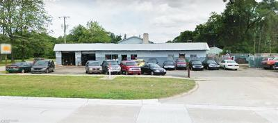 Commercial/Industrial For Sale: 44096 Mound