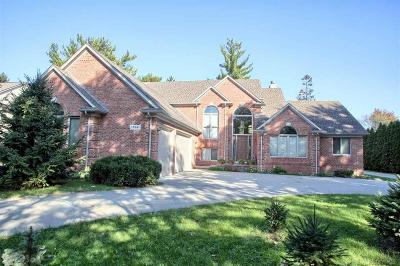 Clinton Township Single Family Home For Sale: 17581 Millar Road