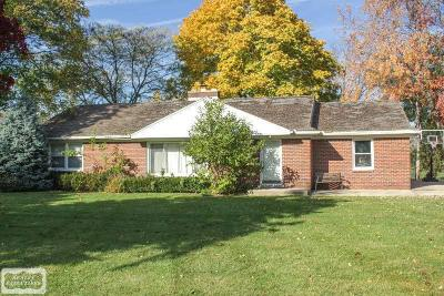 Clinton Township Single Family Home For Sale: 17817 N Nunneley