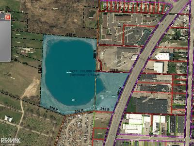 Mount Clemens Residential Lots & Land For Sale: 141 N Groesbeck