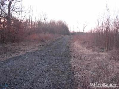 Residential Lots & Land For Sale: 8860 Division