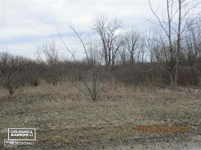 Armada, Armada Twp Residential Lots & Land For Sale: 73404 Castle Court, Parcel# H