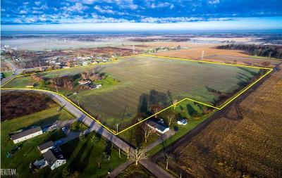 Ray, Ray Twp Residential Lots & Land For Sale: 23223 29 Mile