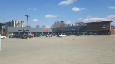 Clinton Township Commercial Lease For Lease: 41972 Hayes