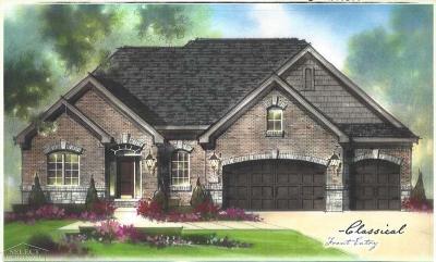 Macomb Twp Single Family Home For Sale: 22006 Anita Way East