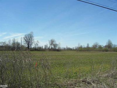 """Ray, Ray Twp Residential Lots & Land For Sale: 0 """"a"""" Omo"""