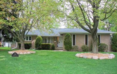 Saint Clair Single Family Home For Sale: 220 Meldrum