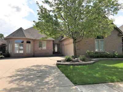 Macomb Twp Single Family Home For Sale: 18292 Ranier Drive
